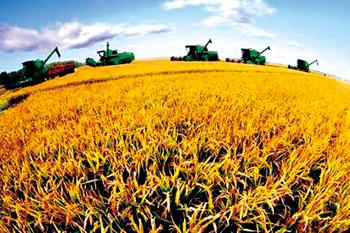 聚焦 | 农业在改革,农民在升级,农资企业该干点什么?
