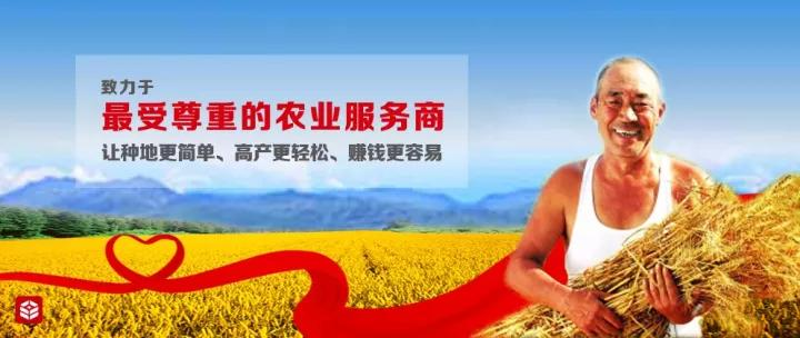 对话|丰信农业创始人董金锋:农业服务市场是蓝海,但必须要落地!