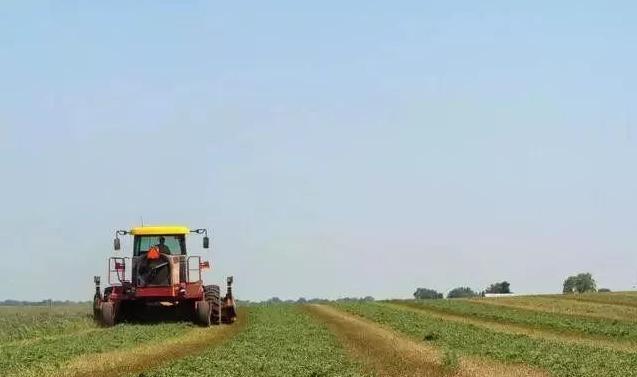 6大趋势告诉你,未来10年的农业什么样