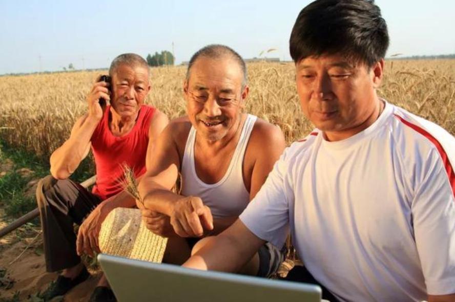 区块链在农业领域有哪些用途?