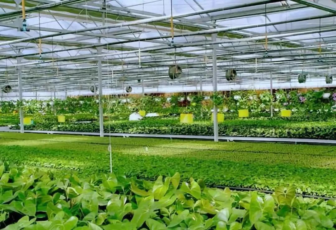 三农日报|数据显示:我国养殖成本过高;业内专家:未来农业应该是功能农业