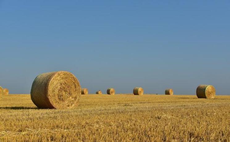 农业创新企业家们带来农业科技八大创新趋势