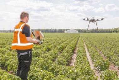 荷兰八成农民借助传感器技术实现精准农业