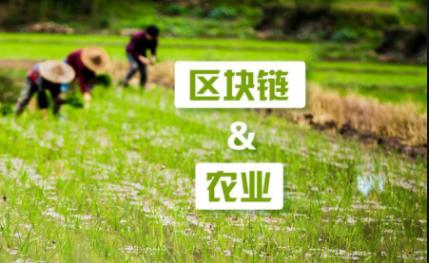 """让农业迎接新变革 徐明星谈""""区块链+农业"""""""