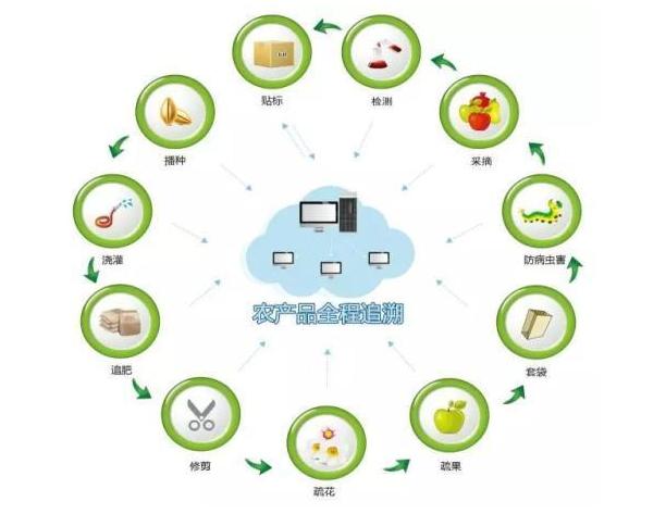"""""""区块链""""助力数字农业弯道超车,促进智慧农业生态发展"""