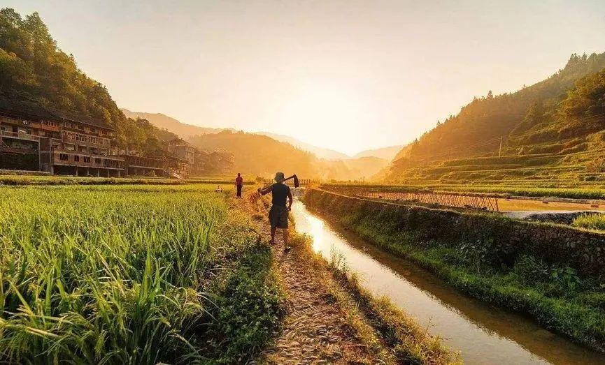农业不强大,中国难崛起,农业该如何做大做强?