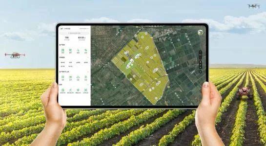 透视6个超级数字农业应用案例,我们发现90%项目都是大佬游戏