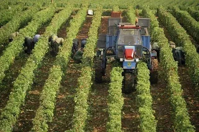 【新模式】我国精准农业的六大发展趋势