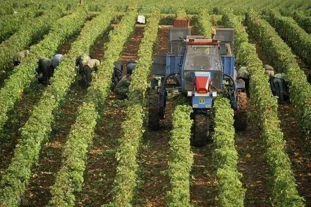 【模式研究】我国精准农业的六大发展趋势