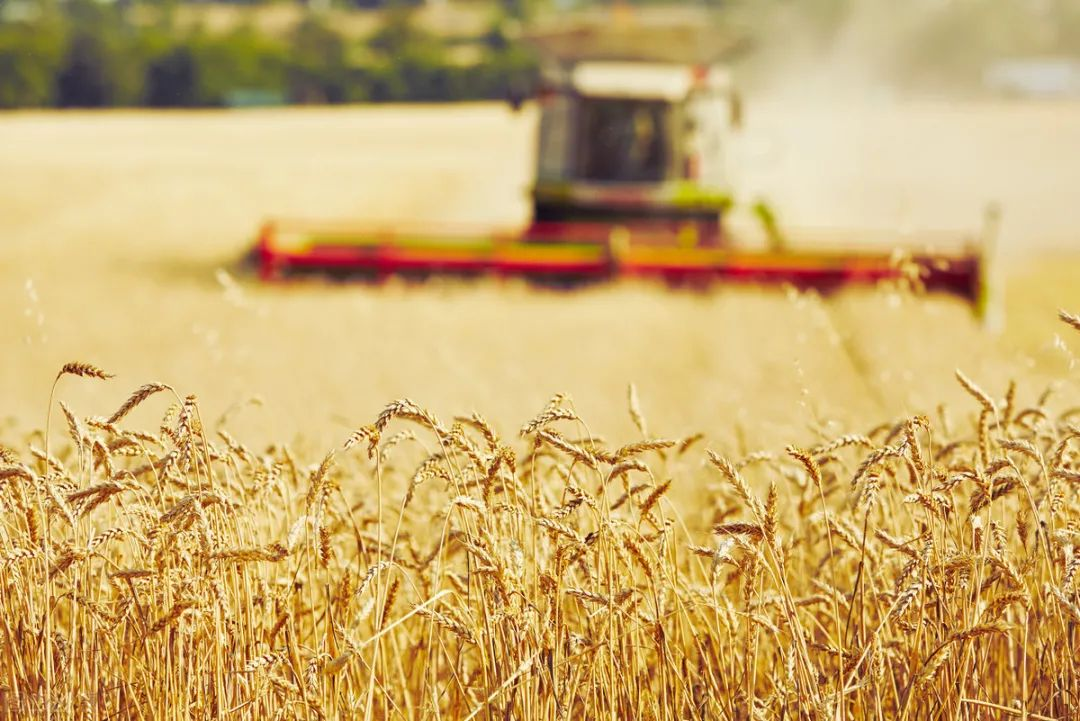 【未来农业】什么是新农业?