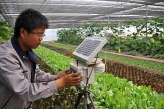 """""""十三五""""农业农村信息化规划:物联网化将达17%"""