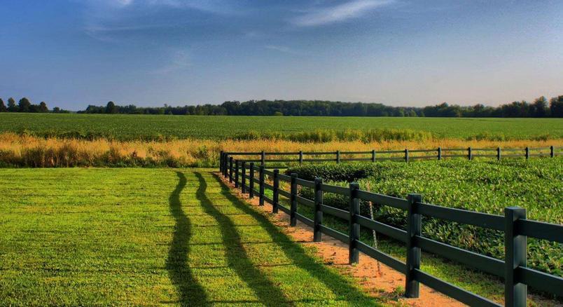 农村套路|农村土地经营权可抵押,但有些事情你未必知道