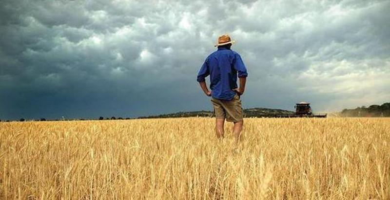2017年,农民最愁的3件事!背后的原因让人惊悚!