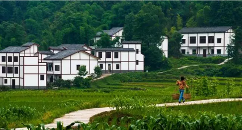 5年,100个县!农村集体产权制度改革试点扩容,他们的利益将被重点保护