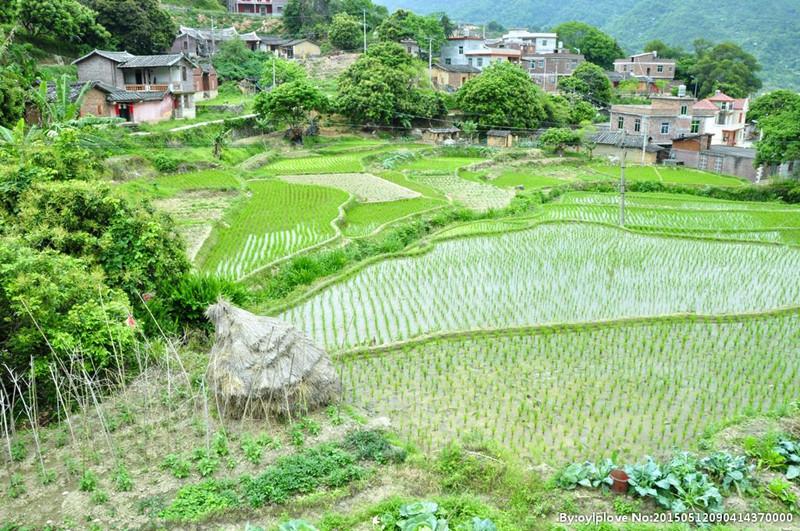2017农村宅基地出新变:农民建房难、宅基地将会被回收