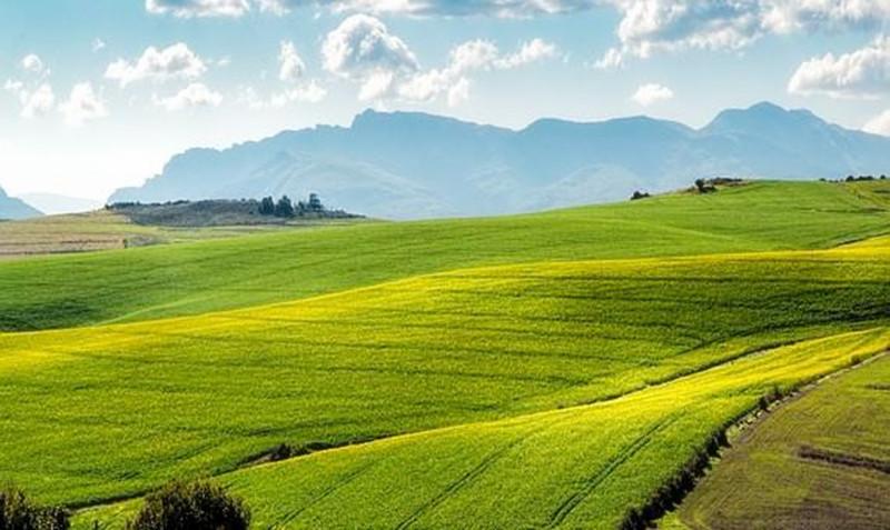 未来国家将重点解决农村这三大问题,农民收入会大大提升!