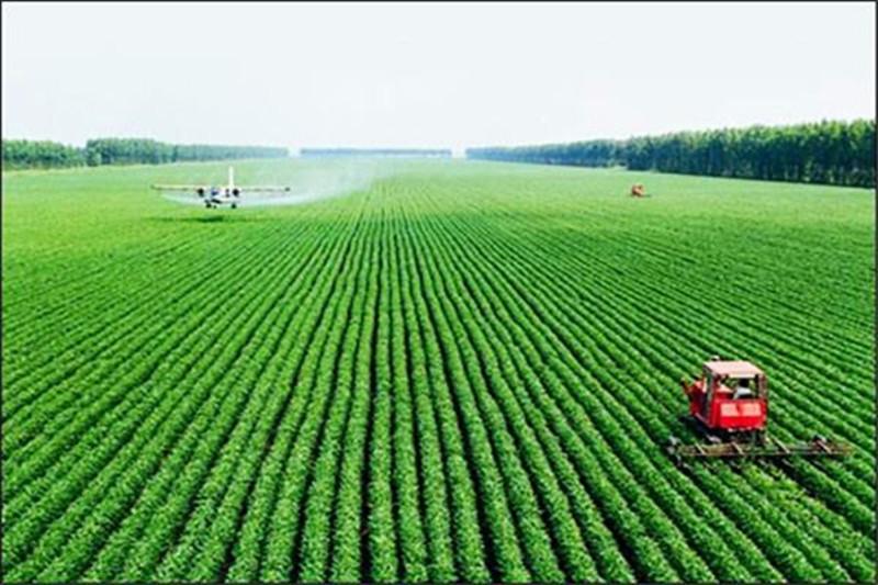 未来的农村,农民将面临这三大选择,谁也逃不掉!