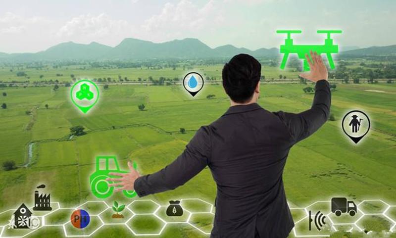 马云预言:未来20年农村的6大机遇