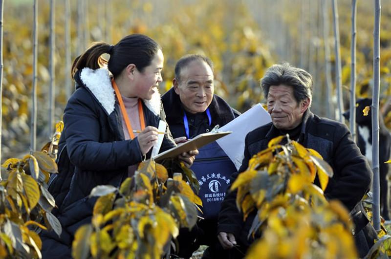 第三次全国农业普查结果出炉,农业、农民、农村发生历史性转变!