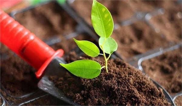 土壤修复大爆发在即,请关注这10大公司(附4个趋势)
