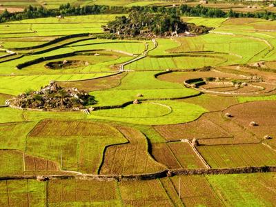 农民要进城!土地承包经营权能有偿退出?多少钱一亩?