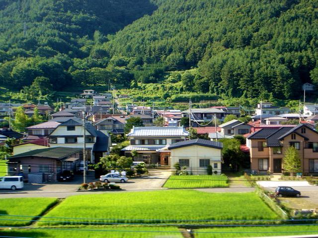 乡村绿色发展应妥善处理好六种关系