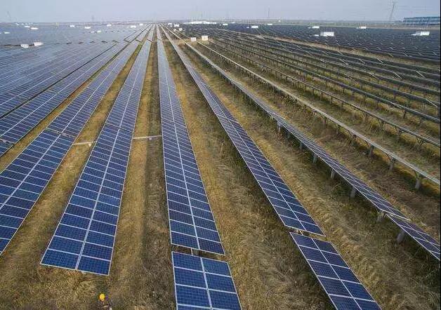 三农日报|国家将预计投资4万亿给农村;我国苜蓿产业迎来新机会