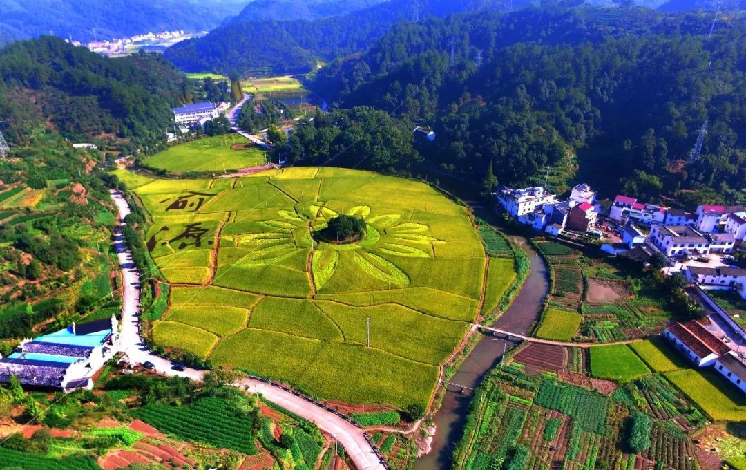 预测|未来3年,国家预计投资4万亿给农村,对我们有什么影响?