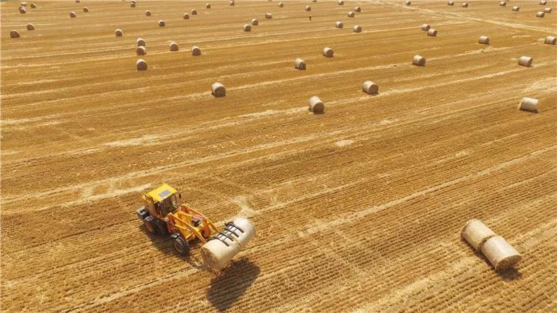9.8亿!9.8亿!9.8亿!农作物秸秆金矿尽显:政策支持,蓝海市场