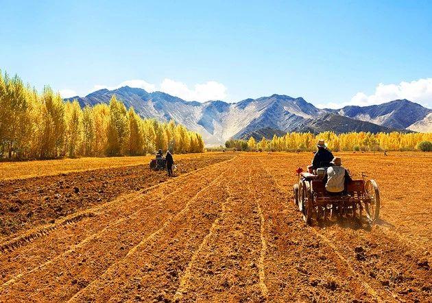 政策解读|六部委:推进土地经营权入股发展农业产业化经营试点