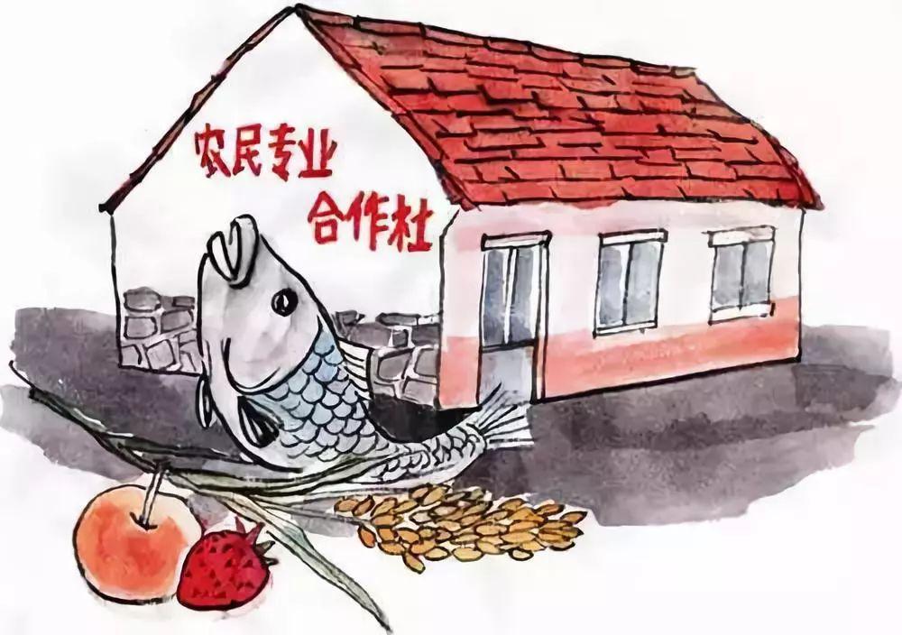 重磅|农业农村部批准8省30县成全国试点,推进这项工作!