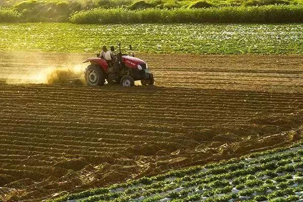 政策解读 农业农村部部长权威解读《国家质量兴农战略规划》