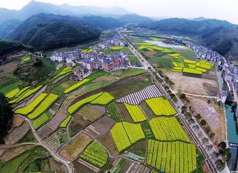 三农日报 经济学家:当前农业离现代化还很远;数据显示:我国乡村产业融合渐成趋势