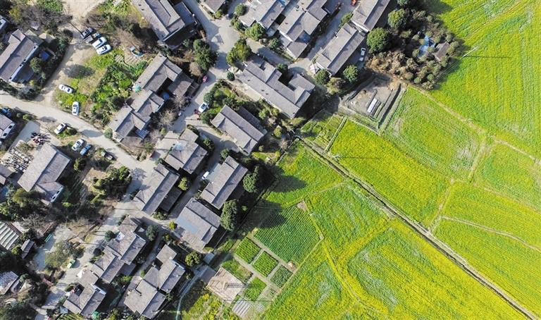 政策解读 城乡融合发展新路线图
