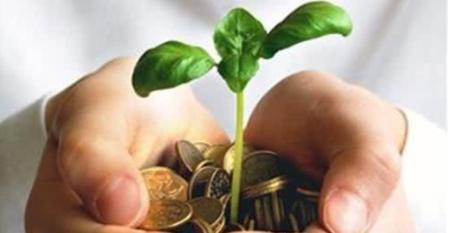 2019下半年农业补贴12项汇总,快来看看!