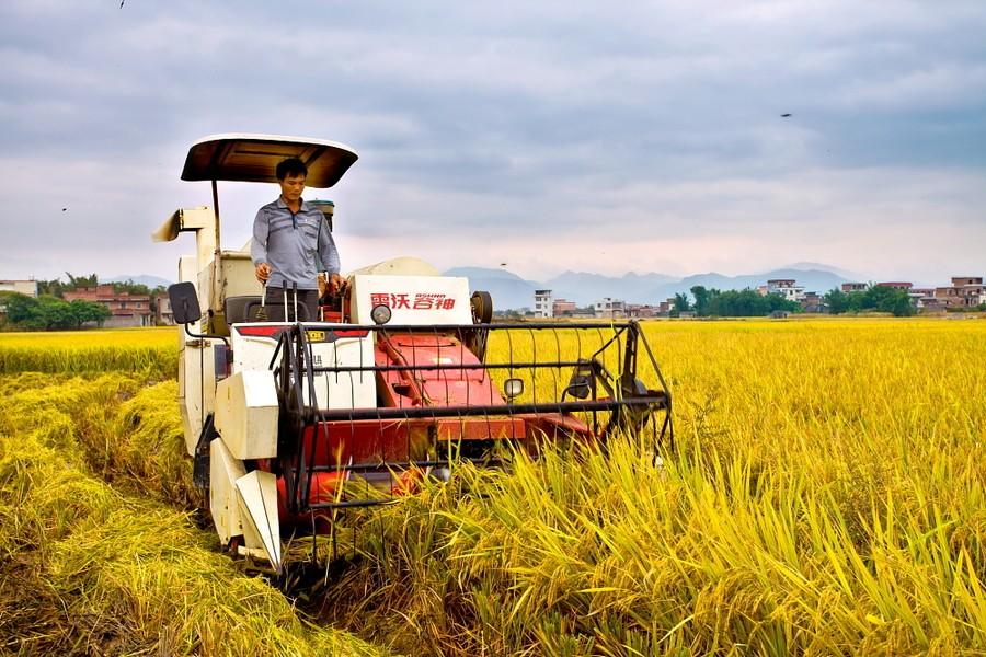 拷问|农民创业创新需更多政策支持(提案提要)