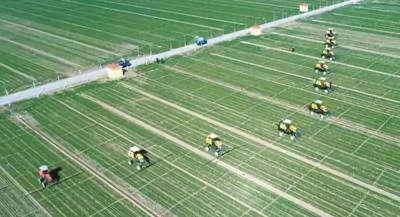 借鉴|农业农村部推介20个农业社会化服务典型案例