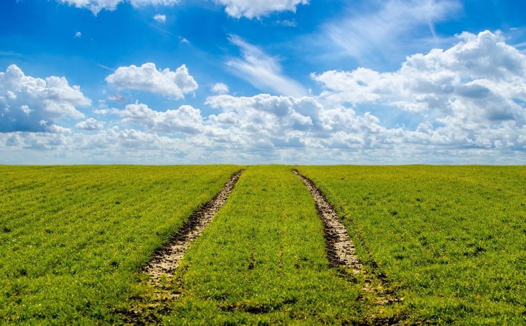 讲的真透!什么类型的农业项目值得投资?投什么有前景?