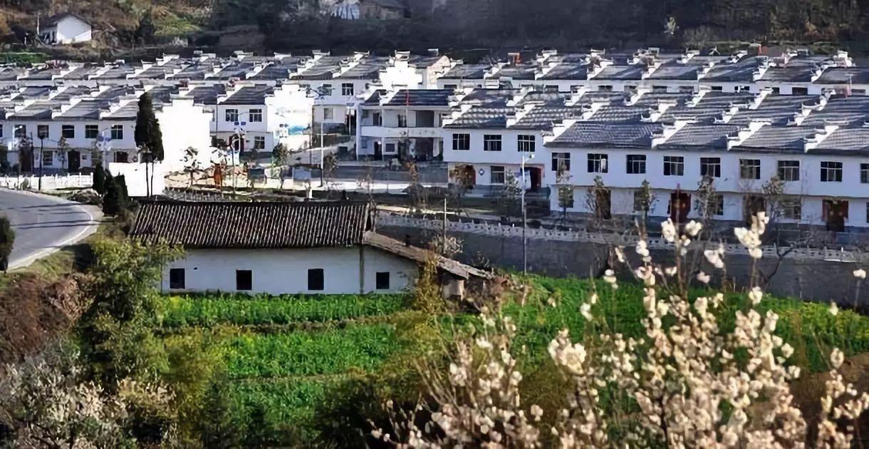 韩长赋:70年,农业农村发展最根本的宝贵经验是这两条!