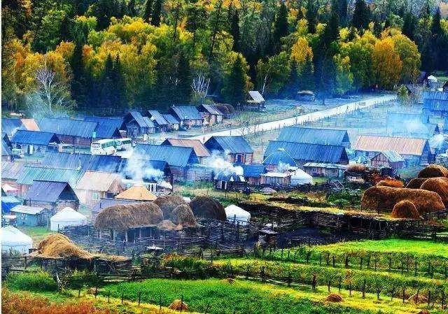 乡村产业项目创业迎来大爆发!