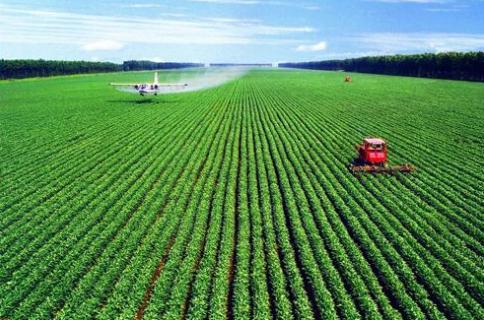 老龄化趋势下的中国农业:现状和对策