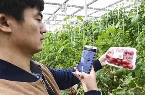 【政策】2020年 农业农村部重点扶持这样28个项目!(建议收藏)