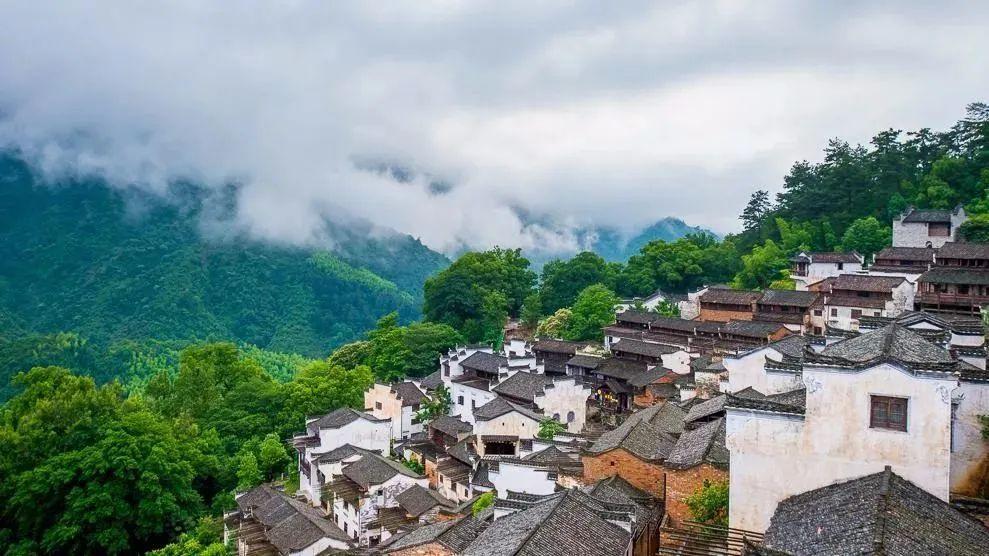 【深度思考】中国农业模式探索与变革