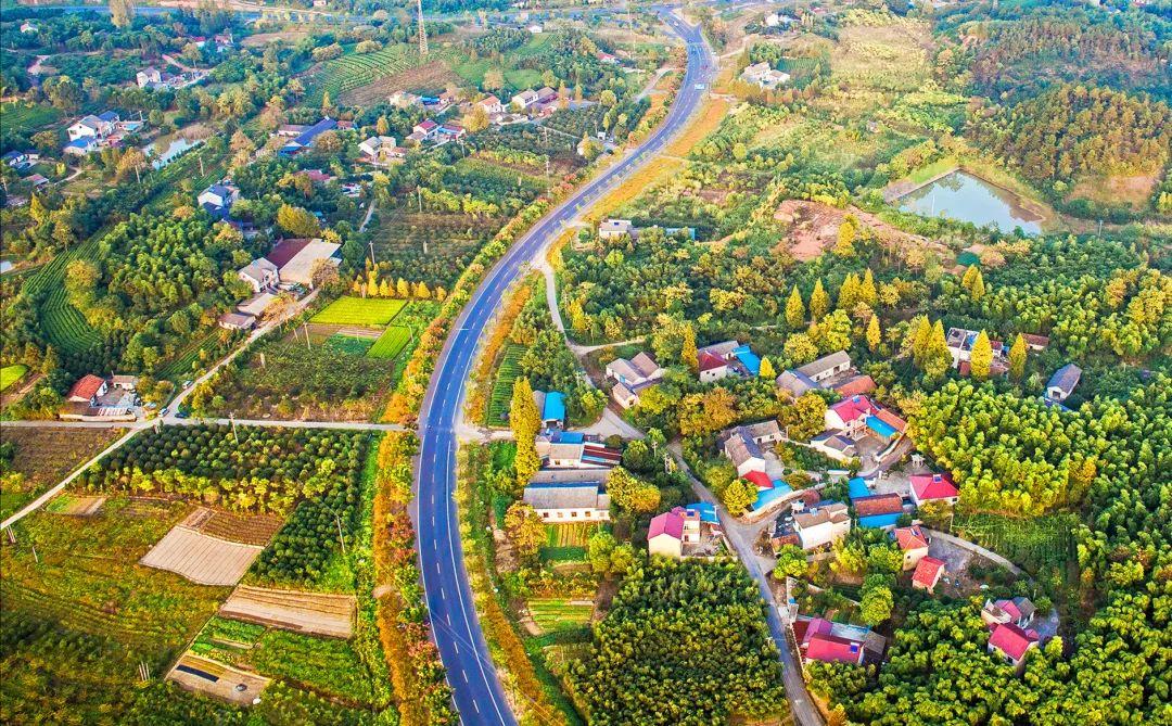 【行业预测】乡村振兴最有前景的9大产业