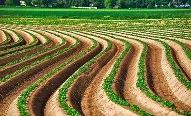 【政策】关于农村土地问题,民法典作了哪些规定?如何理解?
