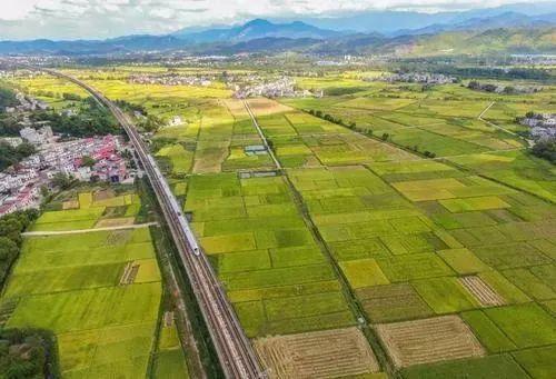 【政策】中办国办印发《关于促进小农户和现代农业发展有机衔接的意见》
