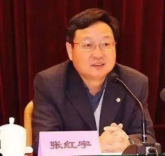 【大佬解读】张红宇:2020年农业农村经济运行的四个问题