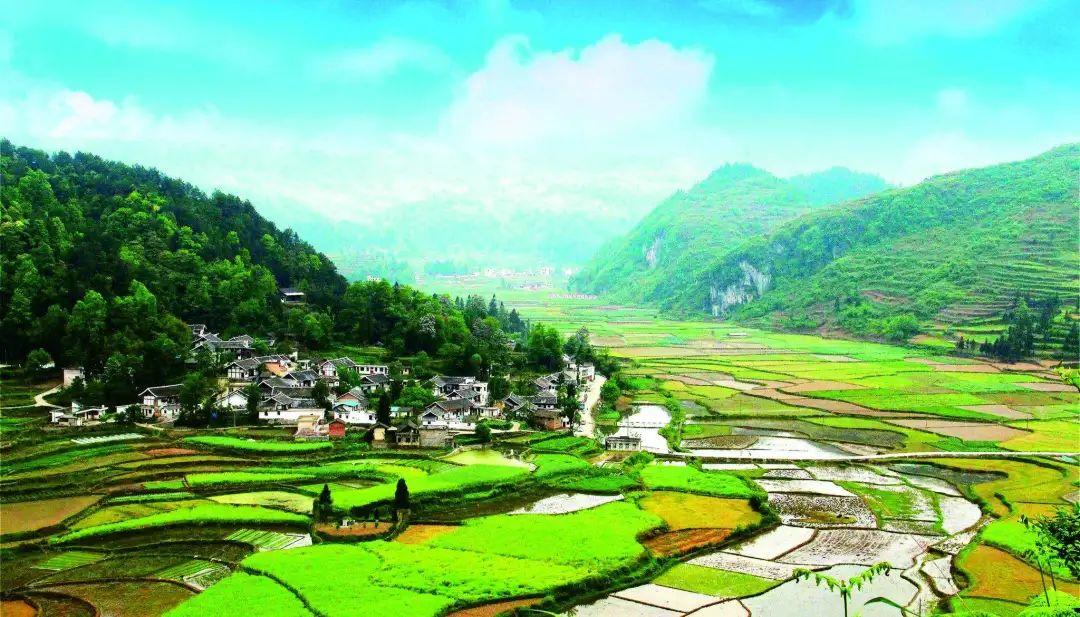 【政策】农业农村部:加大支持,提升农业原字号全产业链发展水平