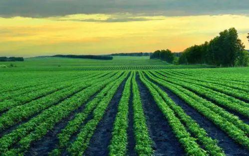 【涨知识】乡村振兴必知的20个土地基础概念