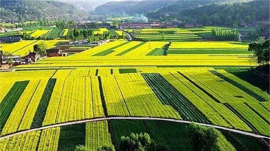 【大佬】张红宇:中国乡村产业未来的发展方向